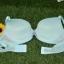 เสื้อชั้นในวาโก้ Wacoal Cool Size A80 thumbnail 4