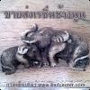ขายส่งเรซิ่นช้าง นูนมีมิติ สำหรับนำไปประกอบชิ้นงาน ตกแต่งสินค้าให้มีความสวยงาม เรซิ่นรูปสัตว์หลากแบบคลิก