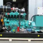 Gas Generator เครื่องปั่นไฟฟ้าก๊าซชีวภาพ ก๊าซชีวมวล