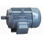 Generator 1KW 1000 RPM เจนเนอเรเตอร์ 1 กิโลวัตต์ 1000 รอบ