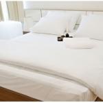 Cotton 210 เส้น - ผ้าปูที่นอน ไม่รัดมุม