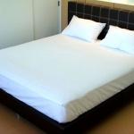 TC 180 เส้น - ผ้าปูที่นอน ไม่รัดมุม