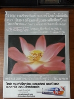ฟ้าเมืองไทย ฉบับที่ 933
