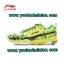 รองเท้าแบดมินตัน LI-NING รุ่น AYAK072-2 สีเขียว ตัวใหม่ล่าสุด ปี 2015 (จัดส่งฟรี EMS!!) thumbnail 1