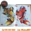 [KOI #2] หนังสือลายสักปลาคาฟ หนังสือสักลาย รูปลายสักสวยๆ รูปรอยสักสวยๆ สักลายสวยๆ ภาพสักสวยๆ แบบลายสักเท่ๆ แบบรอยสักเท่ๆ ลายสักกราฟฟิก Koi Carp Fish Tattoo Manuscripts Flash Art Design Outline Sketch Book (A4 SIZE) thumbnail 3