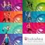 ดีวีดี ฟิตเนส - Baladea Fitness & Wellness System - 8 DVD Set thumbnail 2