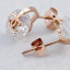 CC Diamentes Earrings thumbnail 1