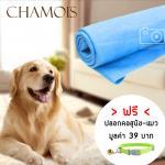 ผ้าเอนกประสงค์ ผ้าชามัวร์ อุปกรณ์อาบน้ำสุนัข-แมว สีฟ้า 1ชิ้น แถมฟรีปลอกคอสุนัข-แมว (คละลาย)
