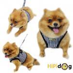 HIPIDOG สายจูงสุนัข เสื้อจูงสุนัข ลายตรง สีดำ/แดง