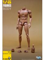 TOYSCITY BD01 1/6 Male Narrow Figure Body