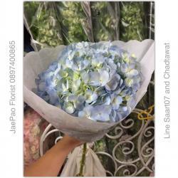 ช่อดอกไฮเดรนเยีย