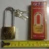 กุญแจสปริงเหล็กชุบ Fion