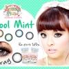 Cool Mint-Gray