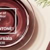 PANTONE ประกาศเทรนด์แห่งปี 2015 สีไวน์แดง