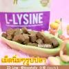 เสริมภูมิต้านทาน lysine (ไลซีน) ในรูปแบบขนม รสไก่ เม็ดรูปปลา(นิ่มๆ)