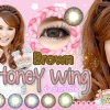 Honey Wing-Brown