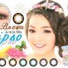 Yipso-Brown