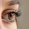 ภัยร้ายของแสงแดดต่อปัญหาของดวงตา