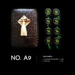Set No. A9