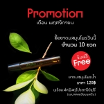 promotion เดือน 11