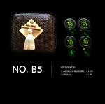 Set No.B5