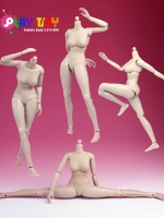 Play Toy Female Body 2.0 M-004