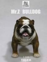 MR.Z Bulldog Z006 English Bulldog