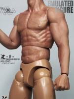 Zctoys Muscular Body 03