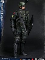 20/12/2017 DAMTOYS 78053 CHINESE PEOPLE'S ARMED POLICE FORCE SNOW LEOPARDCOMMANDO UNIT TEAM LEADER