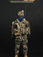 Soldier Story NO.SS075 U.S.AIR FORCE TACP/JTAC