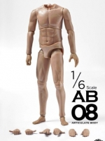 ZCWO 1/6 SCALE ARTICULATE BODY