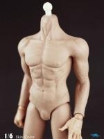 COOMODEL B3005 Muscul Body