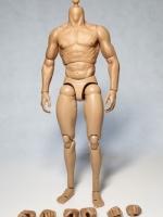 Zctoys Muscular Body 02