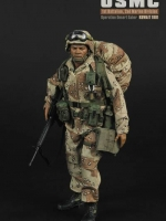 Soldier Story NO.SS071 USMC 1st Battalion, 2nd Marine Division Battalion Operation Desert Saber