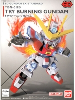 SD 011 TRY BURNING EX-STANDARD