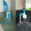 """ลูกลอยเติมน้ำ ลูกลอยแท็งค์น้ำ, 4 หุน (1/2"""") แนวดิ่ง thumbnail 4"""
