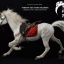 End I Toys EIT1707 Thirty-Six Stratagems: crossing the sea under camouflage - Xue Ren Gui / Horse and saddle thumbnail 16