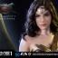 Prime 1 Studio HDMMDC-04 WONDER WOMAN (BATMAN V SUPERMAN: DAWN OF JUSTICE) thumbnail 14