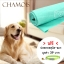 ผ้าเอนกประสงค์ ผ้าชามัวร์ อุปกรณ์อาบน้ำสุนัข-แมว สีเขียวมิ้นท์ 1ชิ้น แถมฟรีปลอกคอสุนัข-แมว (คละลาย)