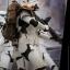 Hot Toys MMS392 ROGUE ONE: A STAR WARS STORY - STORMTROOPER JEDHA PATROL (TK-14057) thumbnail 7