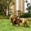 JxK.Studio JxK002 1/6 African Lion figure thumbnail 23
