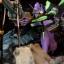 Infinity Studio - EVANGELION thumbnail 1