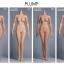 Hot Stuff 1/6 Female Seamless Body 3.0 thumbnail 3