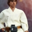 Hot Toys MMS297 STAR WARS: EPISODE IV A NEW HOPE - LUKE SKYWALKER SE thumbnail 3