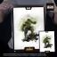 29/05/2018 Iron Studios - Hulk BDS Art Scale 1/10 Avengers Infinity War thumbnail 9