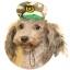 หมวกทหาร /ตำรวจ สำหรับ สุนัข และแมว thumbnail 1