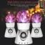 ลำโพงมีไฟ ลำโพงพลาสม่า (Plasma Ball Speaker) thumbnail 4