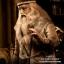 Star Ace SA0023 Albus Dumbledore II thumbnail 14