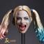 JXTOYS JX-012 Clown girl Hair plastic hair double whip headsculpt thumbnail 2