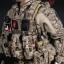 DAMTOYS No.78040, No.78040-1 DEVGRU K9-handler in Afghanistan thumbnail 19